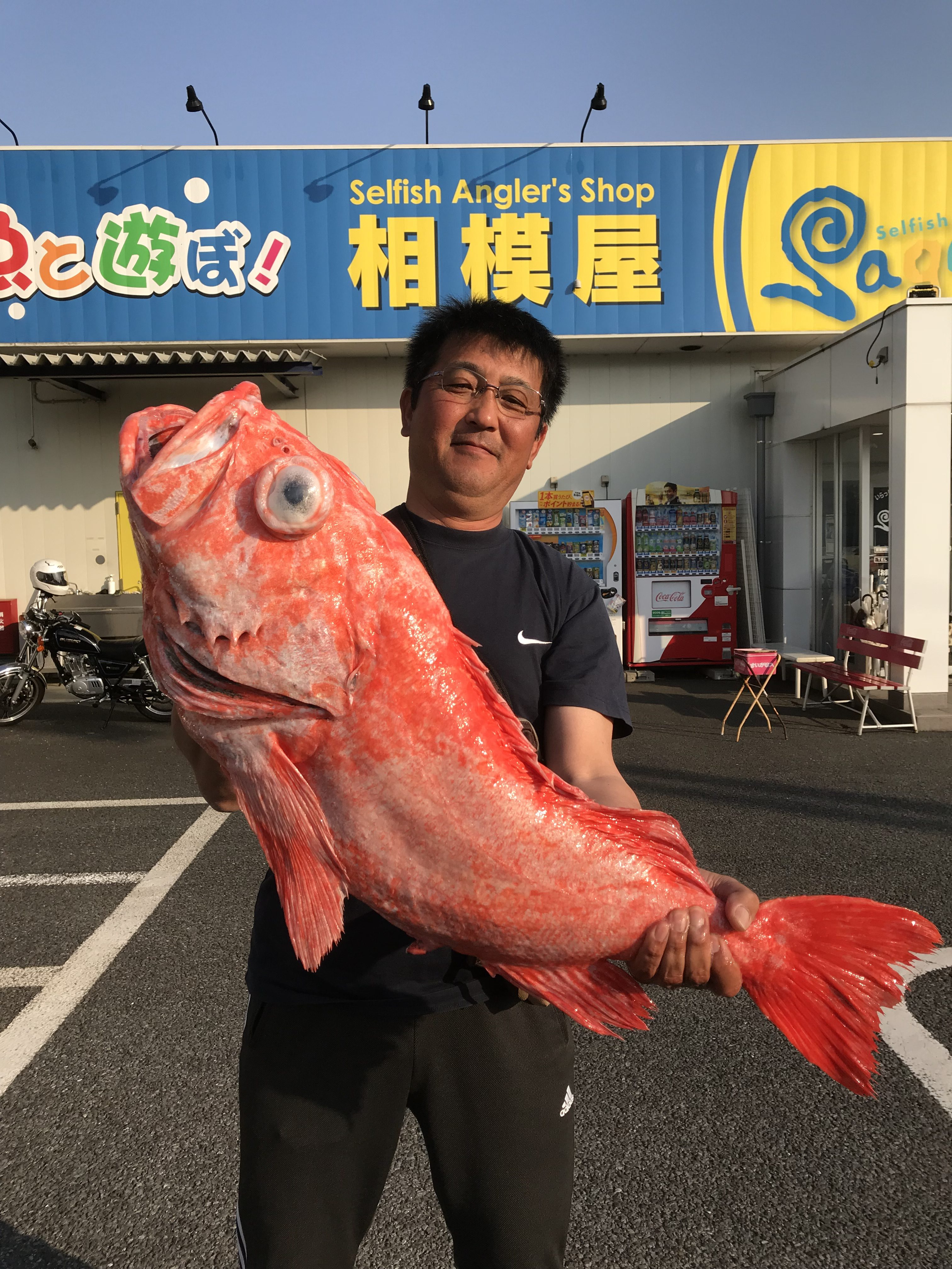 MF★相模原市・渡辺様〜ベニアコウ10.1kg含む/4匹〜