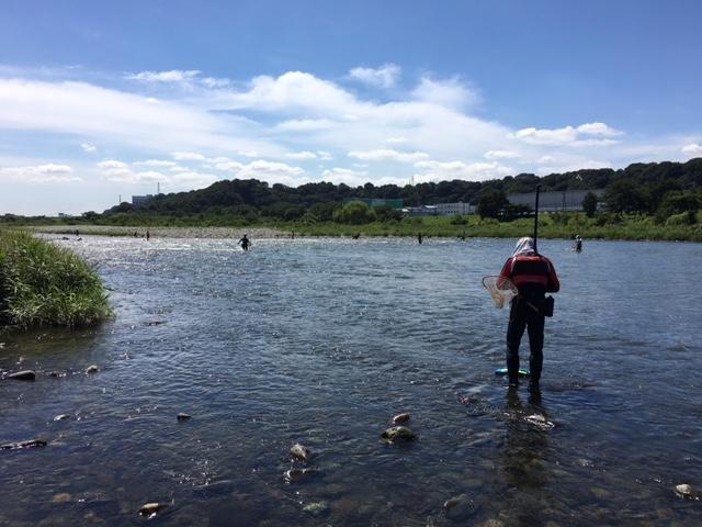 相模川での川遊び・釣り・オトリ鮎は、フィッシング相模屋水郷田名店で!