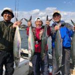 スタッフ石井釣行記~サワラ 2.5-3.0kg・サゴシ 1.3-1.6kg/計9匹~
