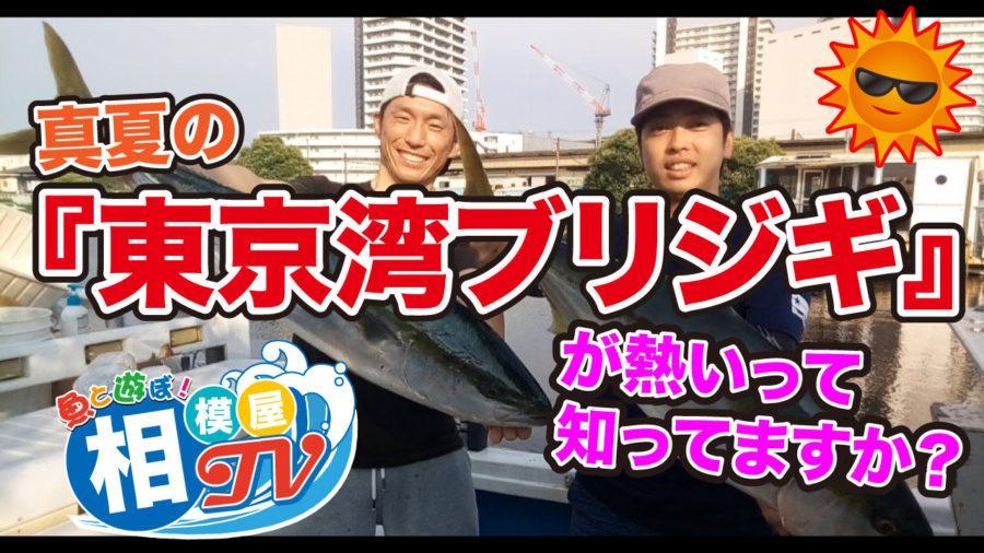 相模屋TV!真夏の東京湾ブリジギ
