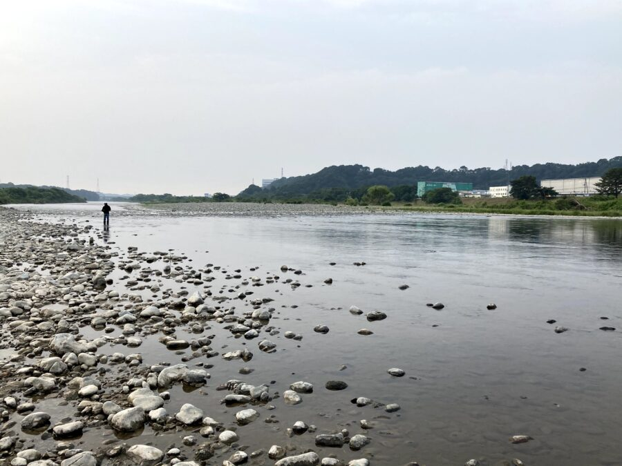 2020年6月5日(金)午前8時相模川河川情報