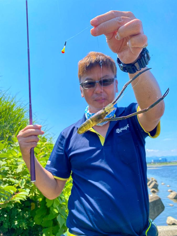 明日の爆釣モーニングは、手長エビ釣りの実釣レポート♪