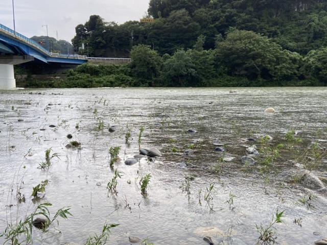 2020年7月10日(金)相模川の様子