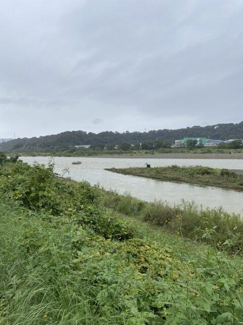 2020年10月11日(日)相模川の様子