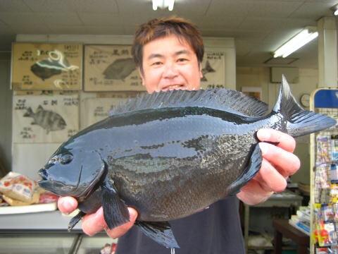 今月の爆釣モーニングは『海釣り公園』をピックアップ♪