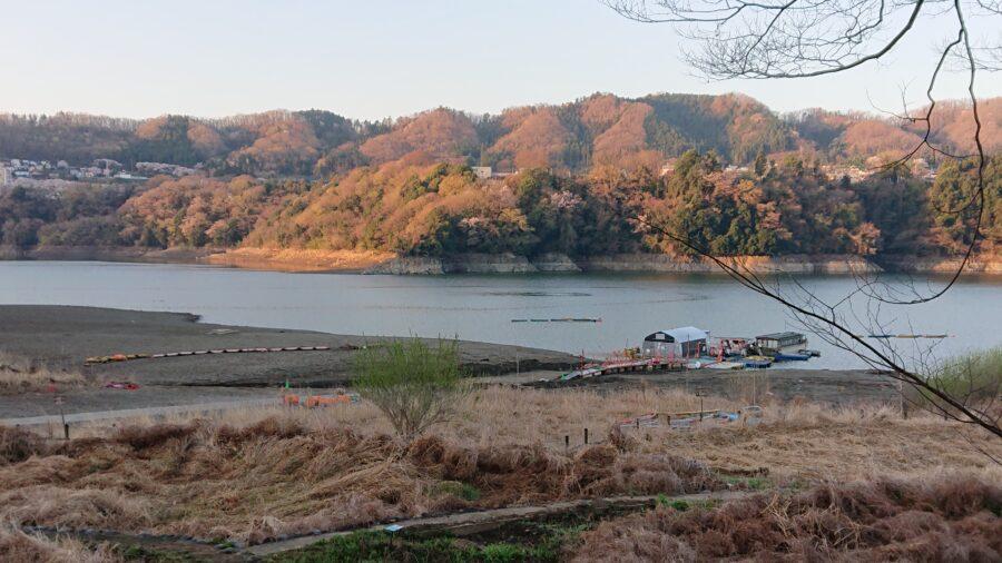 スタッフ吉田君釣行記〜津久井湖/バス43cm・48cm2本〜