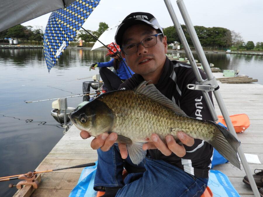 明日の爆モンは、管理釣り場でのへら鮒釣りをピックアップ!